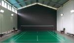 badminton_(1)